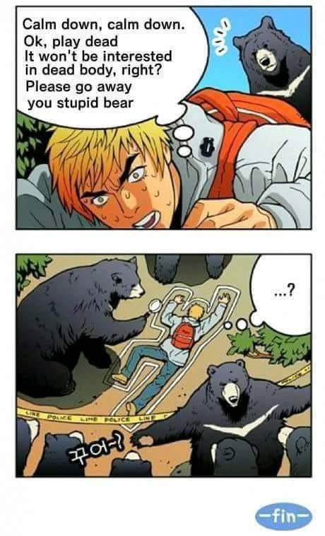 bear. . bear