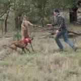 Get off my doge!